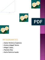 exposicion de curriculum.pptx