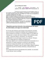 Requisitos para el Seguro de Riesgo De Trabajo.docx