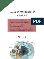 Celula MEMBRANAS