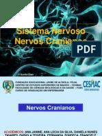 Sistema Nervos CRANIANOS Esse