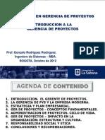 Diplomado Introduccion a La Gerencia de Proyectos 2012