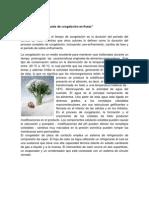 Determinación del punto de congelación en frutas.docx