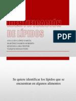 Identificación de lípidos