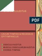 Organon Auditus