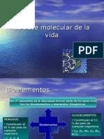 La Base Molecular de La Vida 1