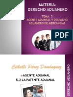 Agente Aduanal y Despacho Aduanero