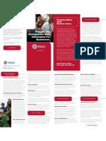 FEMA Business Plan Brochure