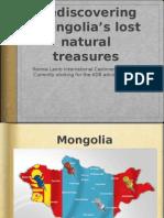 Mongolian Noble Fibre Pres