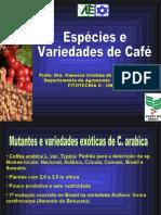 Aula 04 Especies e Variedades de Cafe