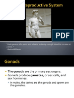 Reproductive System Powerpoint Lecture
