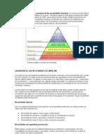 Pirámide+de+Maslow