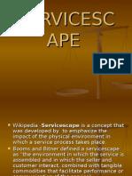 Services Cape