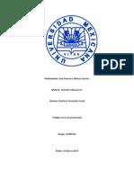 ACTA CIRCUNSTANCIADA ART 176.docx