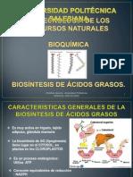 Biosintesis de Àcidos grasos.1..pptx
