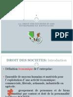 Droit des sociétés.pdf