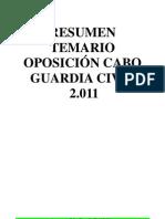 Resumen Materias Examen de Asceso Cabo
