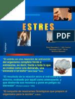 estres-charla4215.pdf
