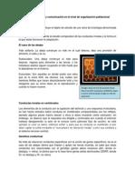 Comportamiento y comunicación a nivel poblacional(1)