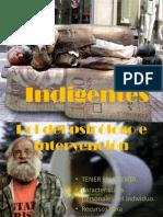 DIAPO INDIGENTES