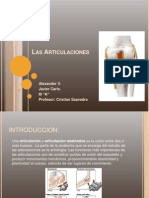 Las_Articulaciones.pptx