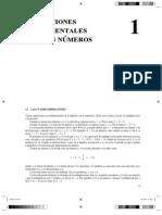 capìtulo 1.pdf