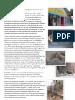 28_10 mars_Coopératives et zoo