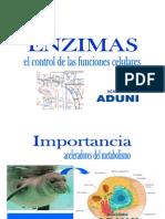 Seminario Enzimas y Vitaminas