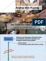 Nutrisi Anjing Dan Kucing