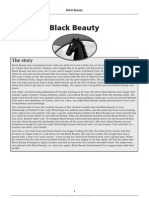 Form 1 novel_Black Beauty Level 5_notes From Mcmillan