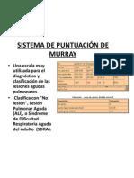 SISTEMA DE PUNTUACIÓN DE MURRAY