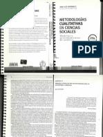 Metodologias Cualitativas en Ciencias Sociales