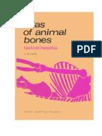 Atlas of Animal Bones - Schmid