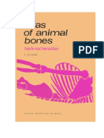 Atlas of Animal Bones - Schmid
