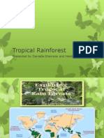 tropical rainforest powerpoint