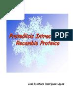 Proteolisis Intracelular Recambio Proteico