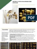 Plan PCC - Paste Fainoase