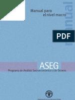 ak229s00 FAO-ASEG manual nivel macro.pdf