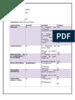 plan con relacion punto nodal.docx