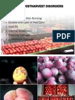 Peach Postharvest Disorders - Crisosto