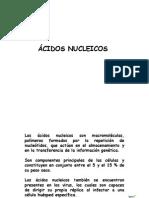 DIAPOSITIVAS.cidos nucleicos.pptx