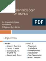 Burn Terapi Topikal 1