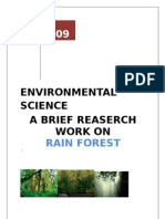 Rain Forest reaserch document