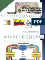 MICORECONOMIA