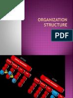 105386977 Organization Structure