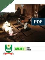 16808194 Basic Arabic