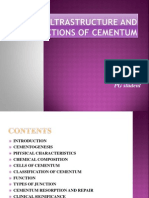Ultrastructure and Functions of Cementum