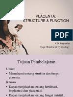 10 kuliah PLACENTA.ppt