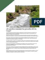 La espuma blanca que se despliega por el río Cesar.docx