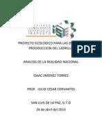 Proyecto Ecologico Para Las Zonas de Prodduccion Del Ladrillo