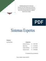 Sistema Experto Ros.docx